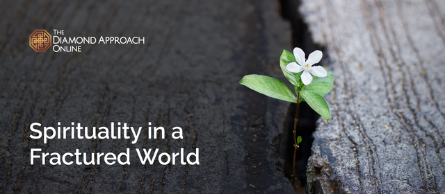 Spirituality in a Fractured World