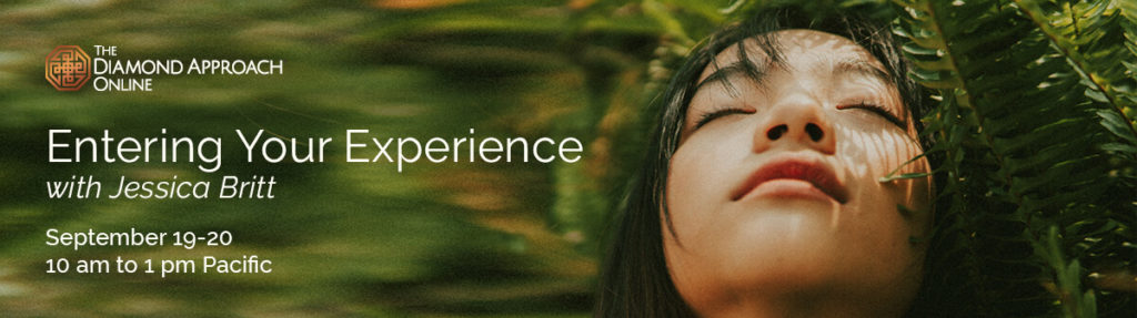 Entering Your Experience