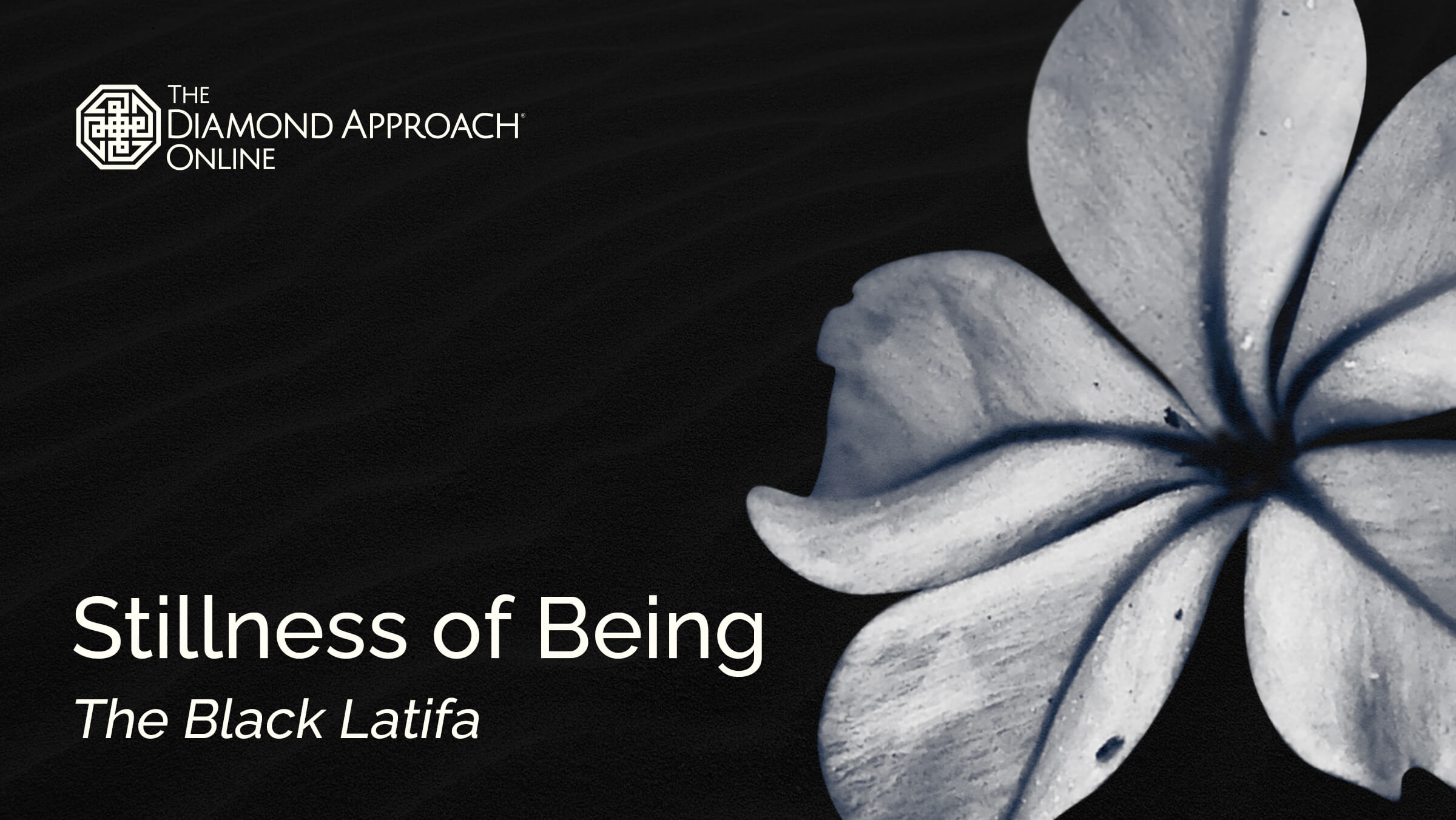 Stillness of Being: The Black Latifa
