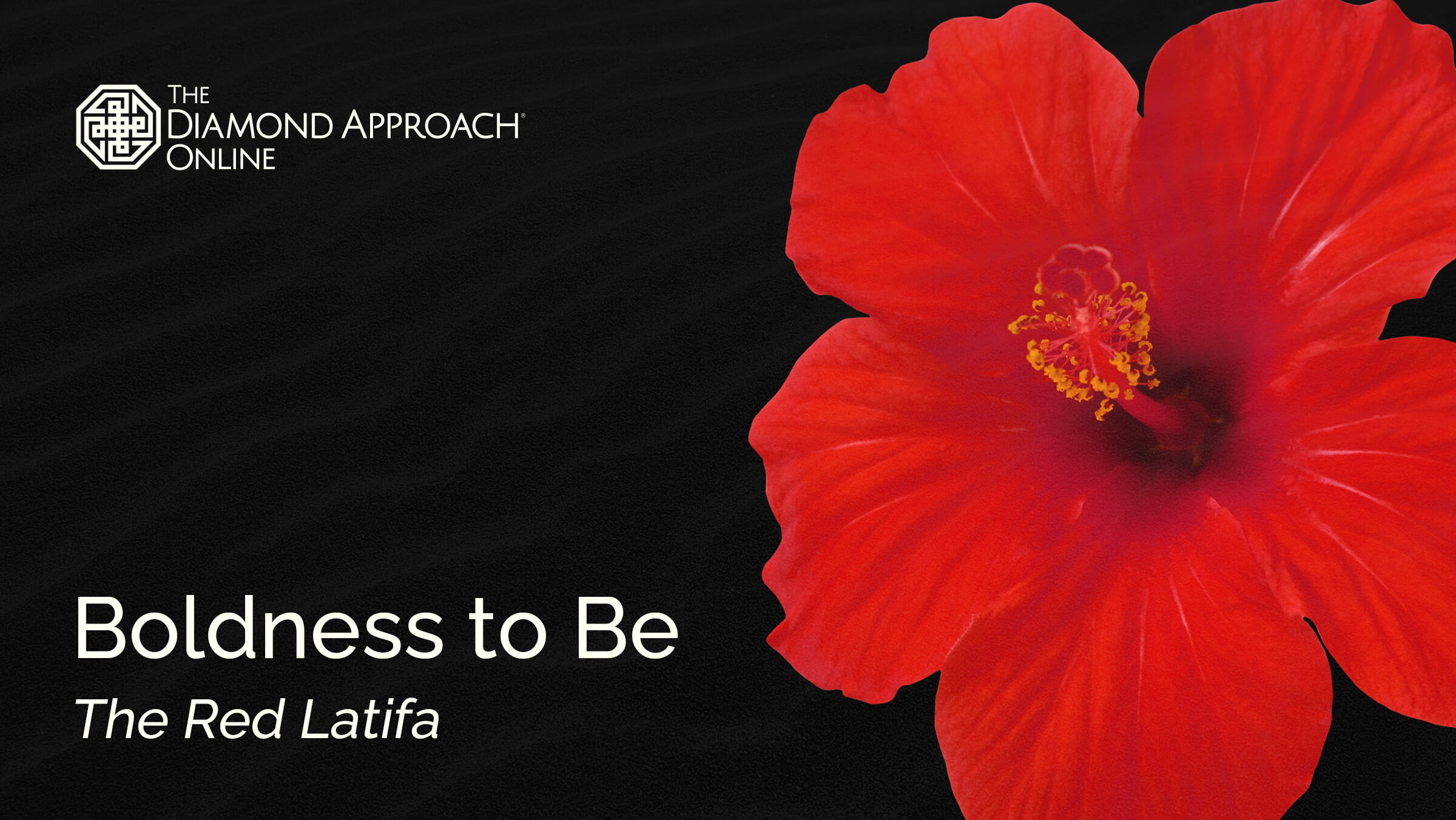 Boldness to Be: The Red Latifa