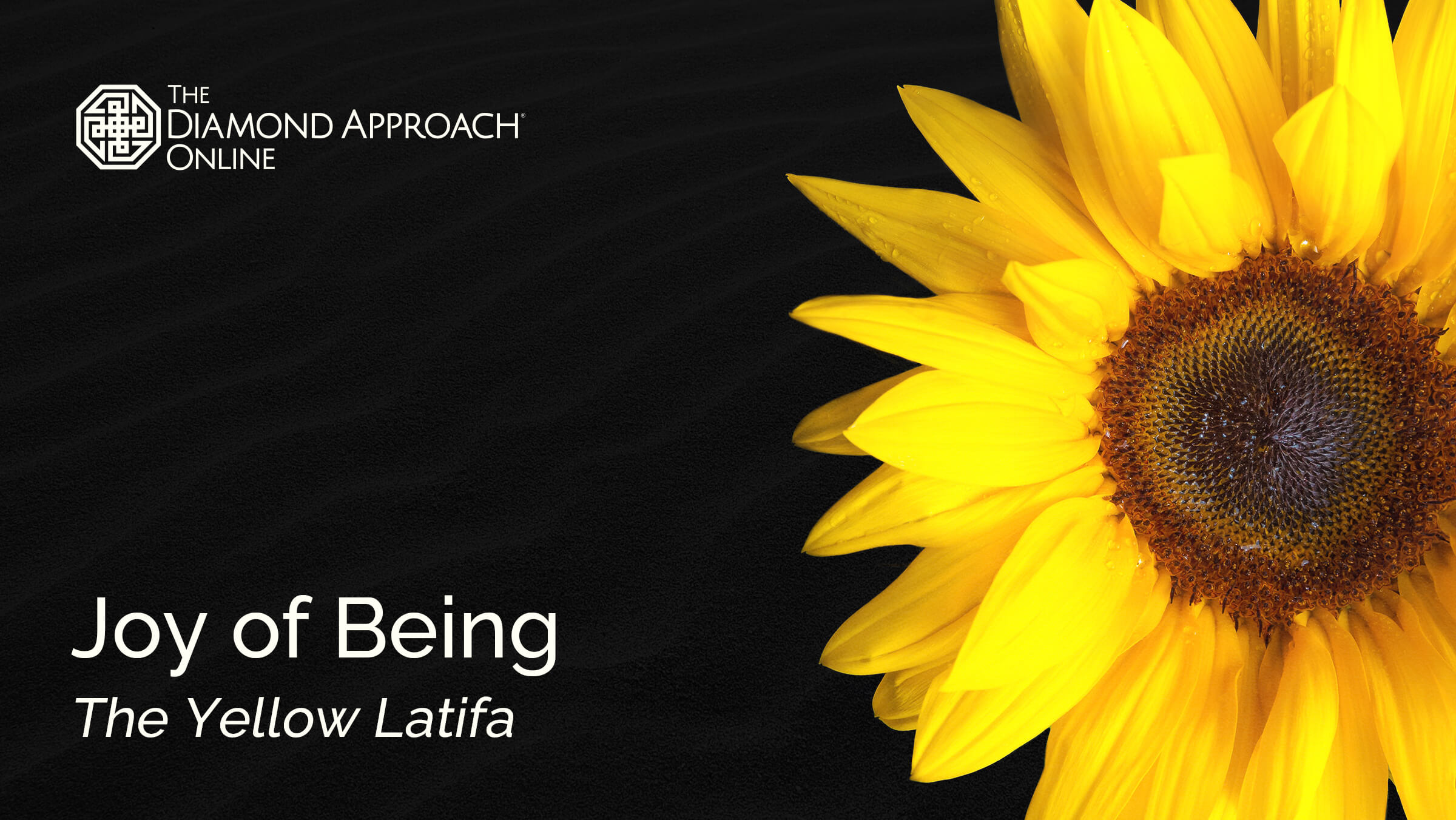 Joy of Being: The Yellow Latifa