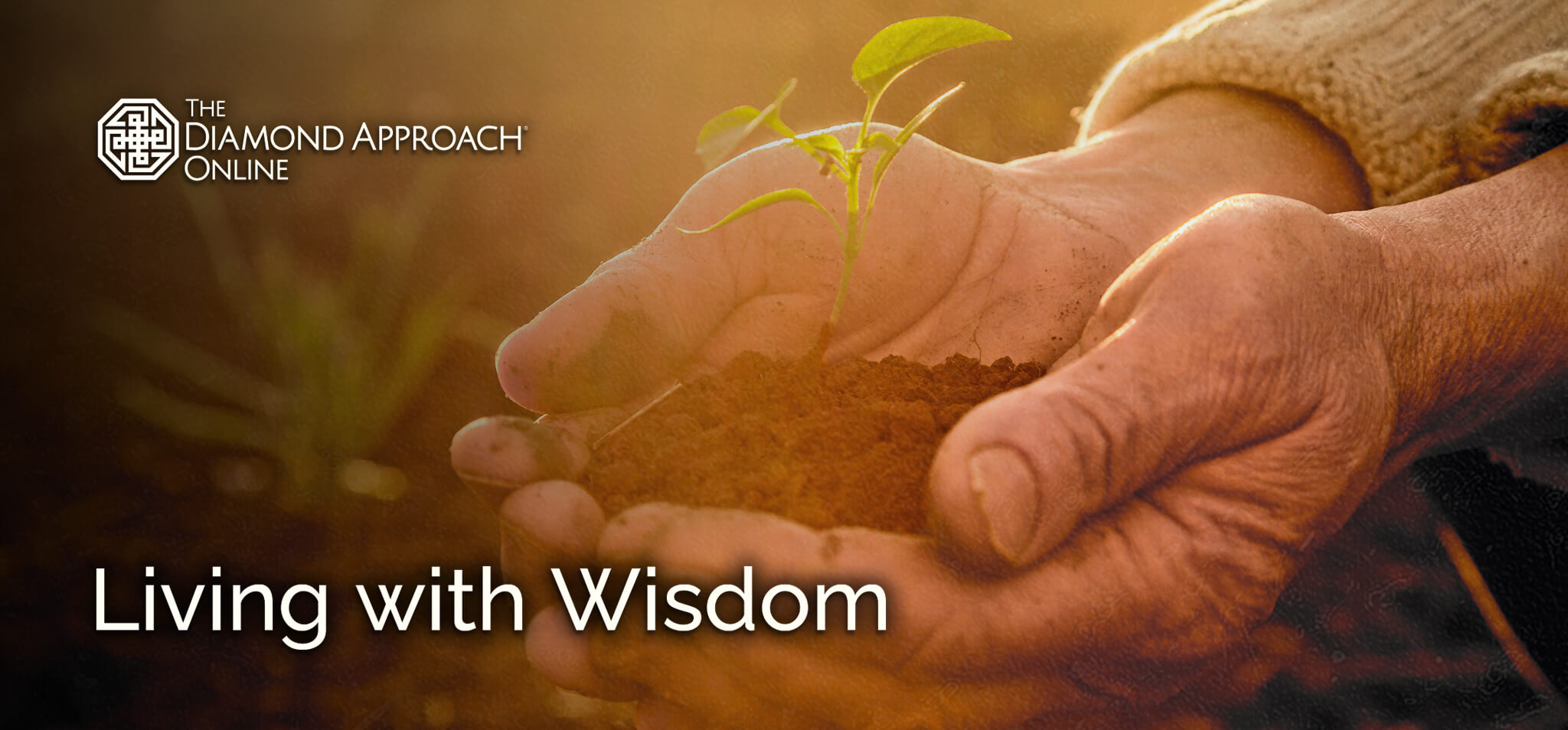 Living with Wisdom Series
